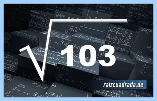 Como se representa habitualmente la operación matemática raíz cuadrada de 103