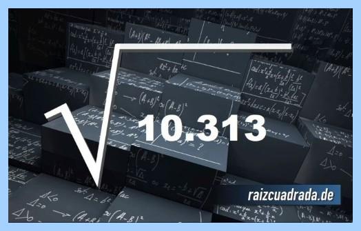 Como se representa habitualmente la operación matemática raíz cuadrada de 10313