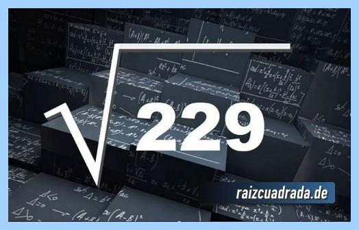 Forma de representar comúnmente la raíz cuadrada del número 229