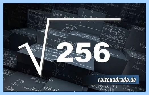Forma de representar comúnmente la operación matemática raíz cuadrada de 256