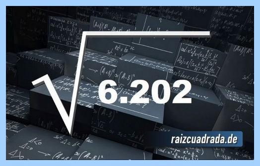 Forma de representar habitualmente la operación matemática raíz cuadrada de 6203