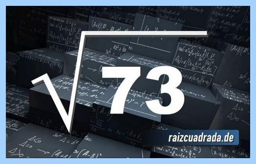 Como se representa habitualmente la raíz cuadrada del número 73