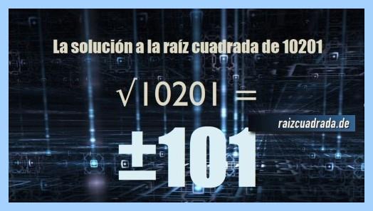 Solución obtenida en la raíz cuadrada del número 10201