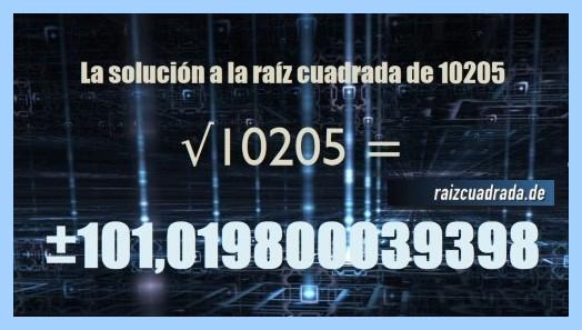 Resultado obtenido en la resolución raíz cuadrada de 10205