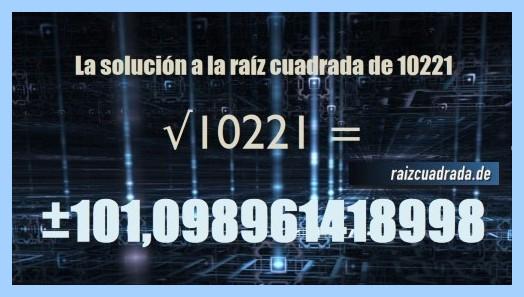 Solución finalmente hallada en la resolución raíz del número 10221