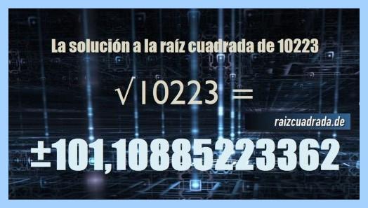 Solución conseguida en la resolución raíz del número 10223