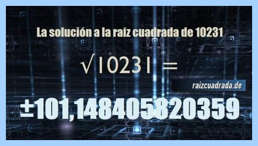Solución que se obtiene en la resolución raíz del número 10231