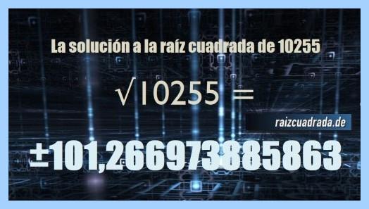 Solución que se obtiene en la raíz del número 10255