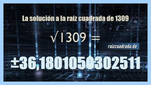 Solución final de la resolución raíz de 1309