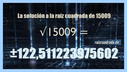 Solución finalmente hallada en la resolución raíz del número 15009