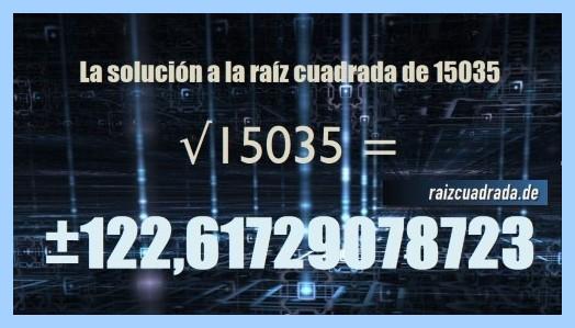 Solución conseguida en la resolución operación raíz de 15035