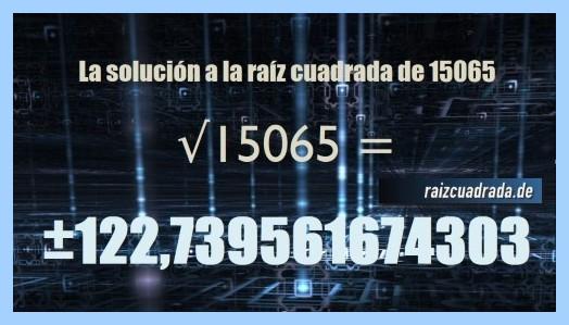 Solución obtenida en la resolución raíz cuadrada del número 15065