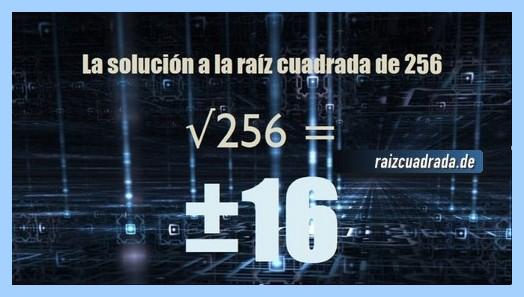 Resultado obtenido en la raíz cuadrada del número 256