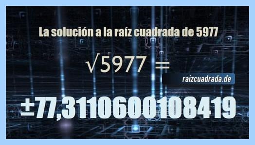 Resultado que se obtiene en la resolución operación matemática raíz cuadrada de 5977