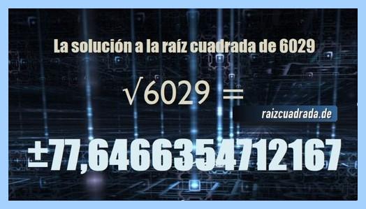 Resultado final de la resolución raíz cuadrada de 6029