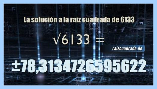 Solución obtenida en la operación raíz de 6133